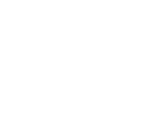 Solidarity Collective